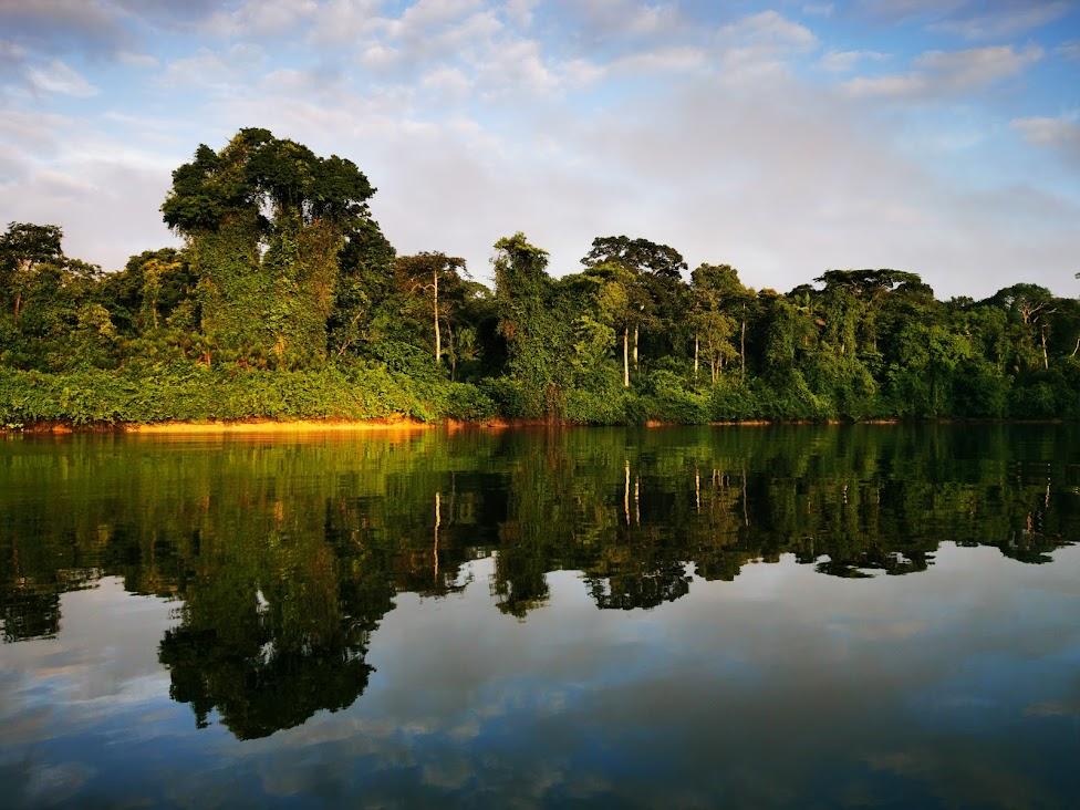 Palumeu river